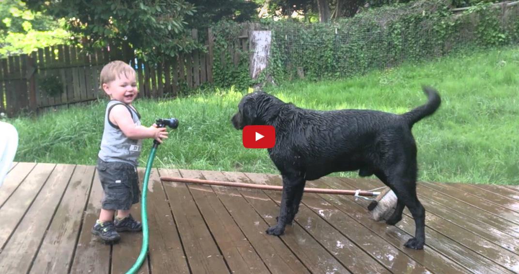 Video Deze tweeling baby heeft de grootste waterpret  Babystraatjenl # Wasbak Hond_182910