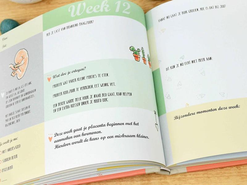 De nieuwe serie memorybooks van Pauline Oud