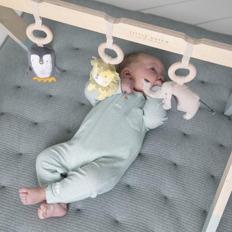 Little Dutch speelgoed babygym