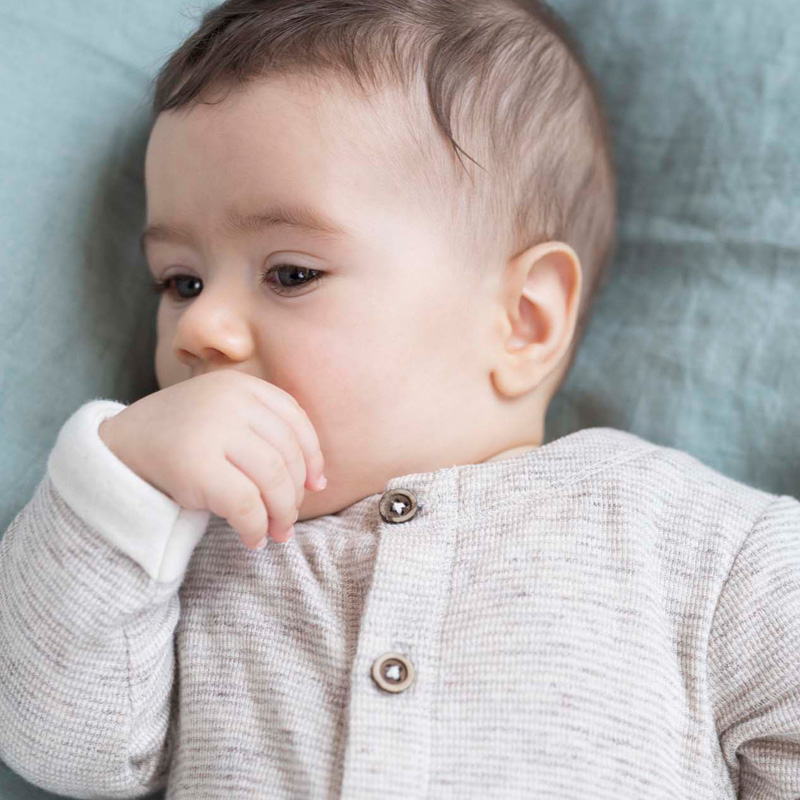 nieuwe prenatal sweet petit 2020