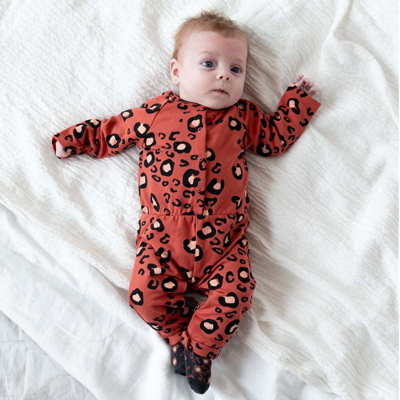 baby peuter februari collectie prenatal